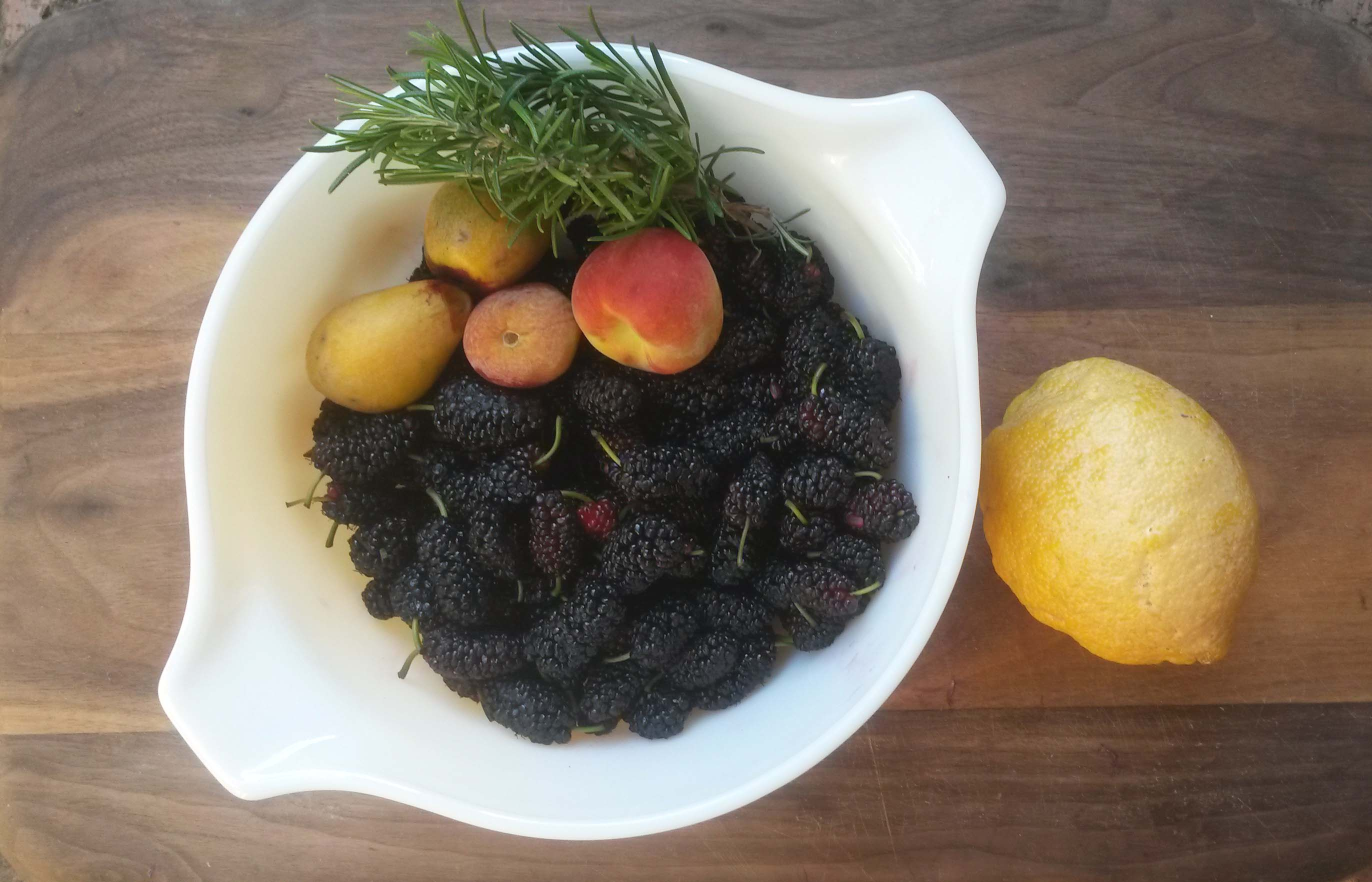 Bowl of fallen fruit foraged