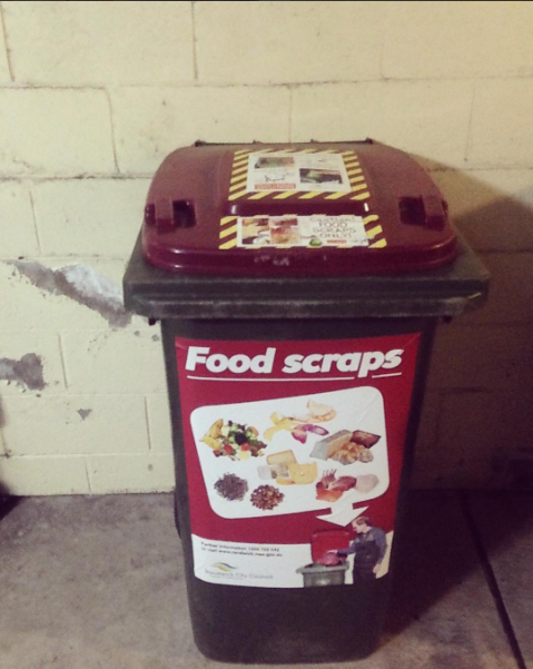 Randwick's Food scrap recycling program